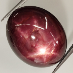 33.09ct Sapphire Star Purple oval cabochon 20.5x16.3mm