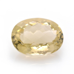 24.83ct Citrine Oval Cut with Chessboard